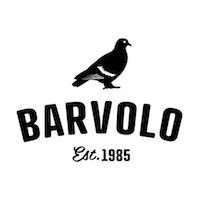 bv_logo2013-01